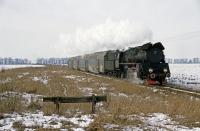 FP5619r