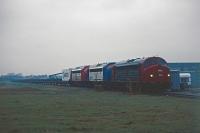 FP2338r